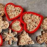 Eko13: Ciasteczka dla ptaków